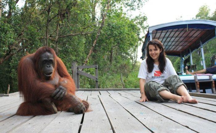 Tanjung Puting - 10 esperienze nel Sud Est Asiatico da fare almeno una volta nella vita