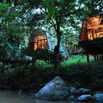 Lodges nella Foresta del Borneo
