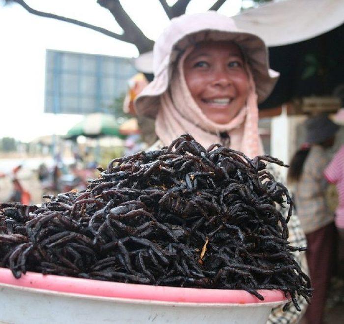 tarantole frittecibi bizzarri del Sud Est Asiatico