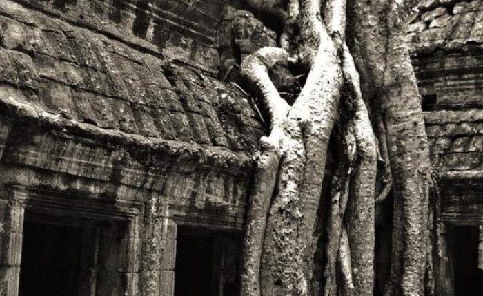Stralci di Viaggio. Angkor Wat, Cambogia