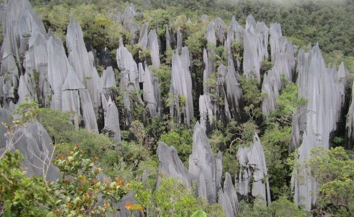Pinnacoli Parco Nazionale di Mulu