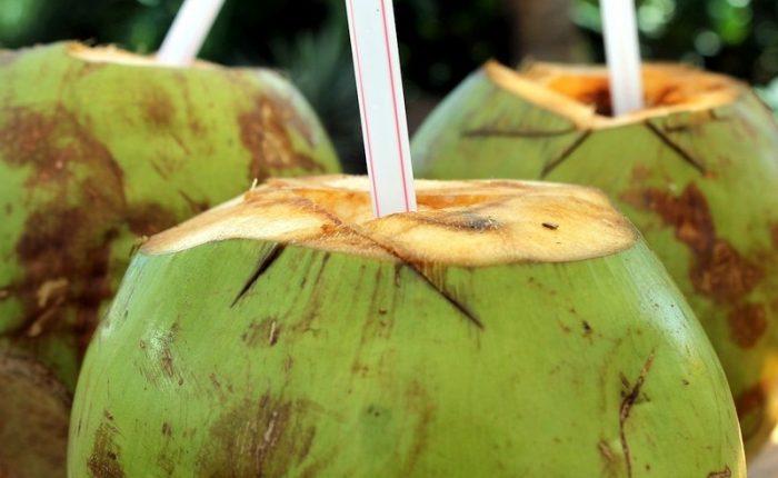 Noce di cocco - 10 Cibi di Strada a Phnom Penh