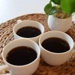 50 dollari per un caffè prodotto dalla cacca di elefante