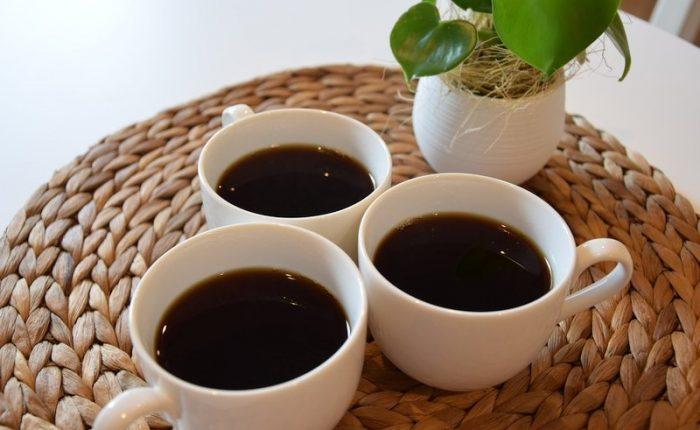 caffè prodotto dalla cacca di elefante