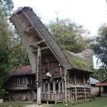 Breve introduzione sulle Sulawesi Indonesia