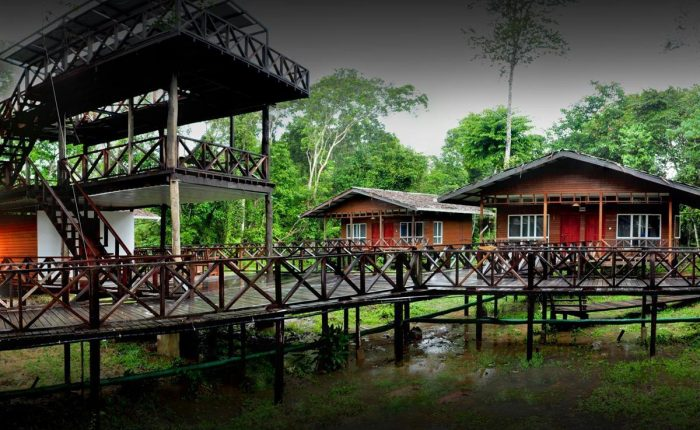 Borneo Nature Lodge, fiume Kinabatangan