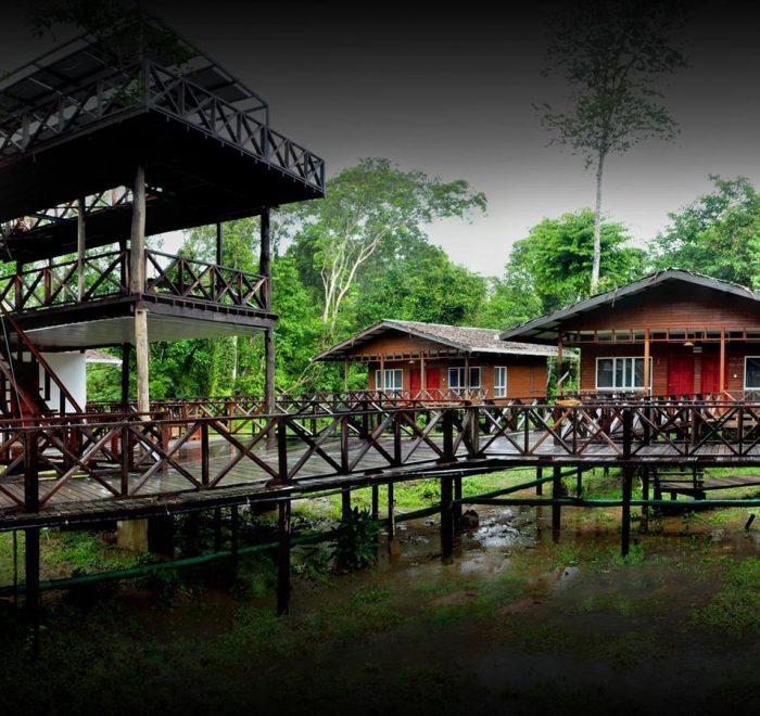 Borneo Nature Lodge, fiume Kinabatangan