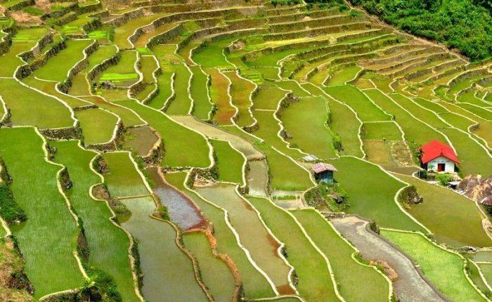 terrazze di riso di Banaue - Guida alla destinazioni più belle delle Filippine