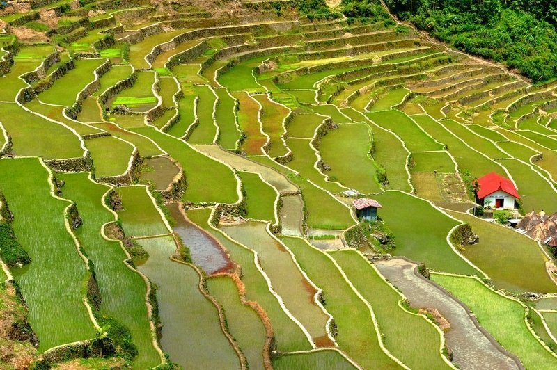 terrazze di riso di Banaue - Guida alla destinazioni più belle delle ...