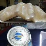 La Perla più grande del mondo si trova sull'isola di Palawan